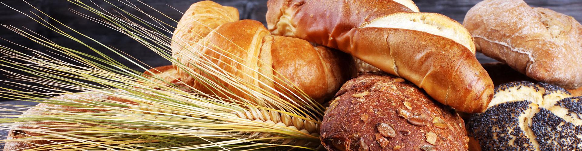 Brötchen in der Bäckerei Körner